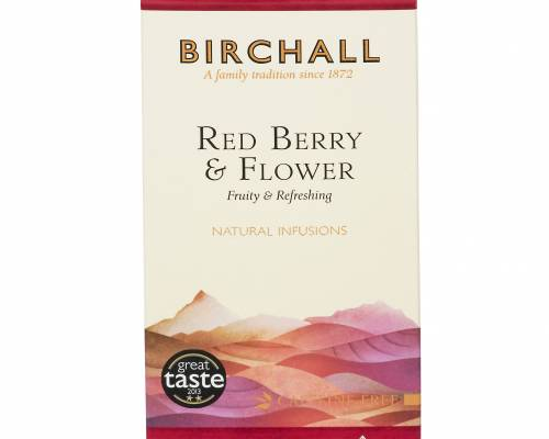 Red Berry & Flower Infusion Prism Bags x 15